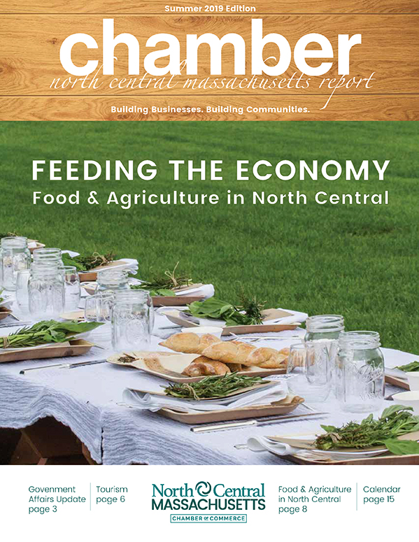 Cover design for the North Central Chamber of Commerce Summer 2019 Report