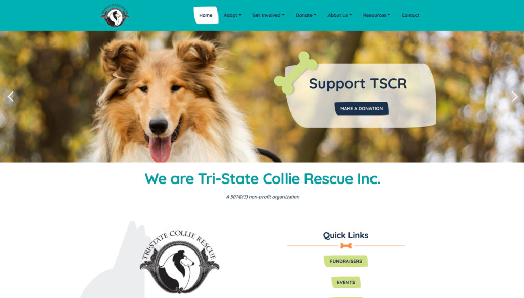 Website design for Tri-State Collie Rescue. Designed by Sitka Creations.